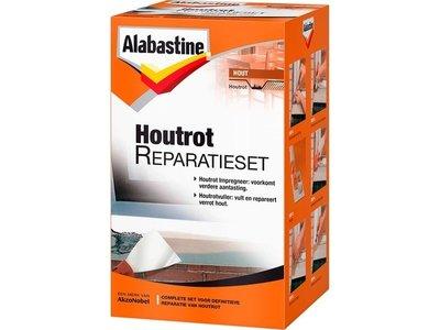 AB HOUTROT REPARATIESET 500GR
