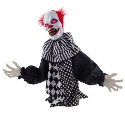 Clown Zittend