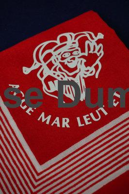 Rode boeren zakdoek met de opdruk van de prins en de tekst Agge mar Leut et