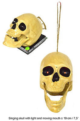 MOTION SKELETON, with music